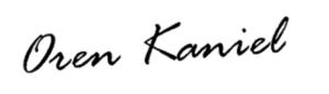 Подпись CEO